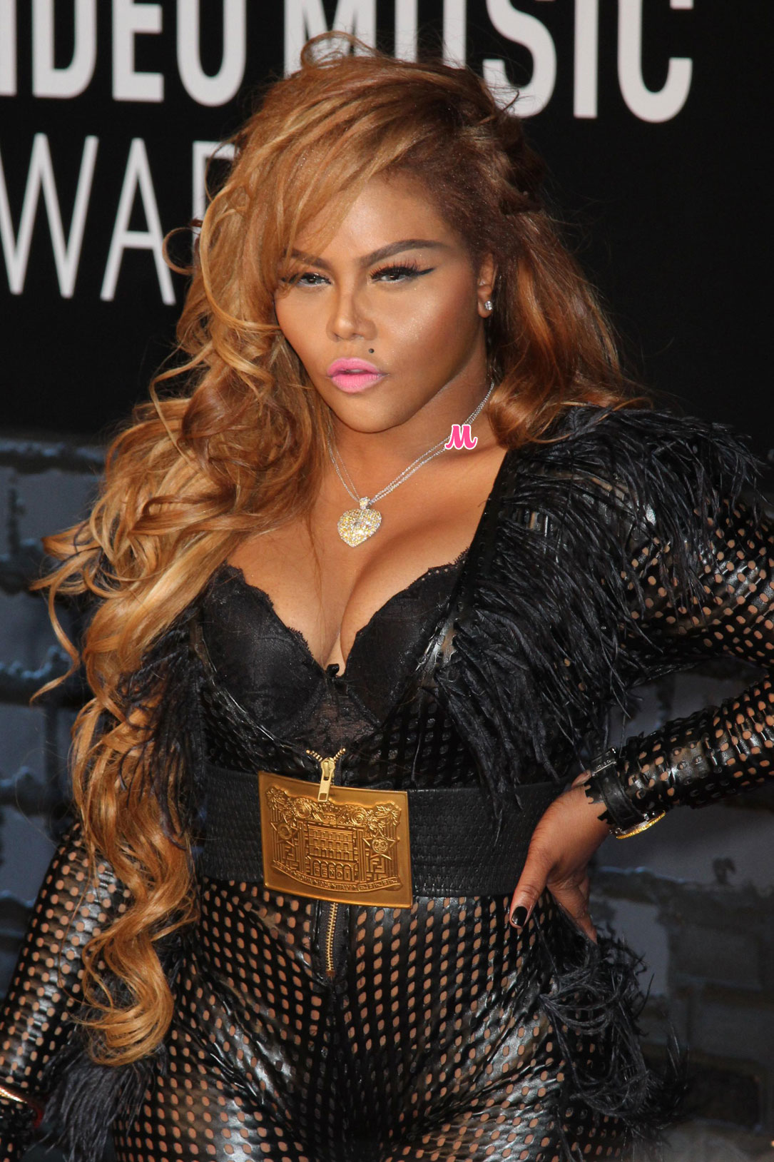 lil-kim-2013-mtv-video-music-awards jpgLil Kim 2013